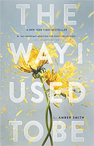 Amber Smith - The Way I Used to Be Audiobook Free